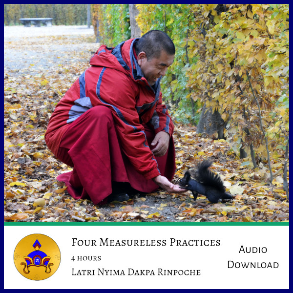 four measureless practice audio